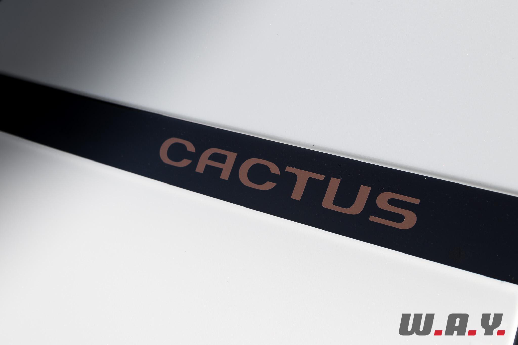 C4Cactus 06