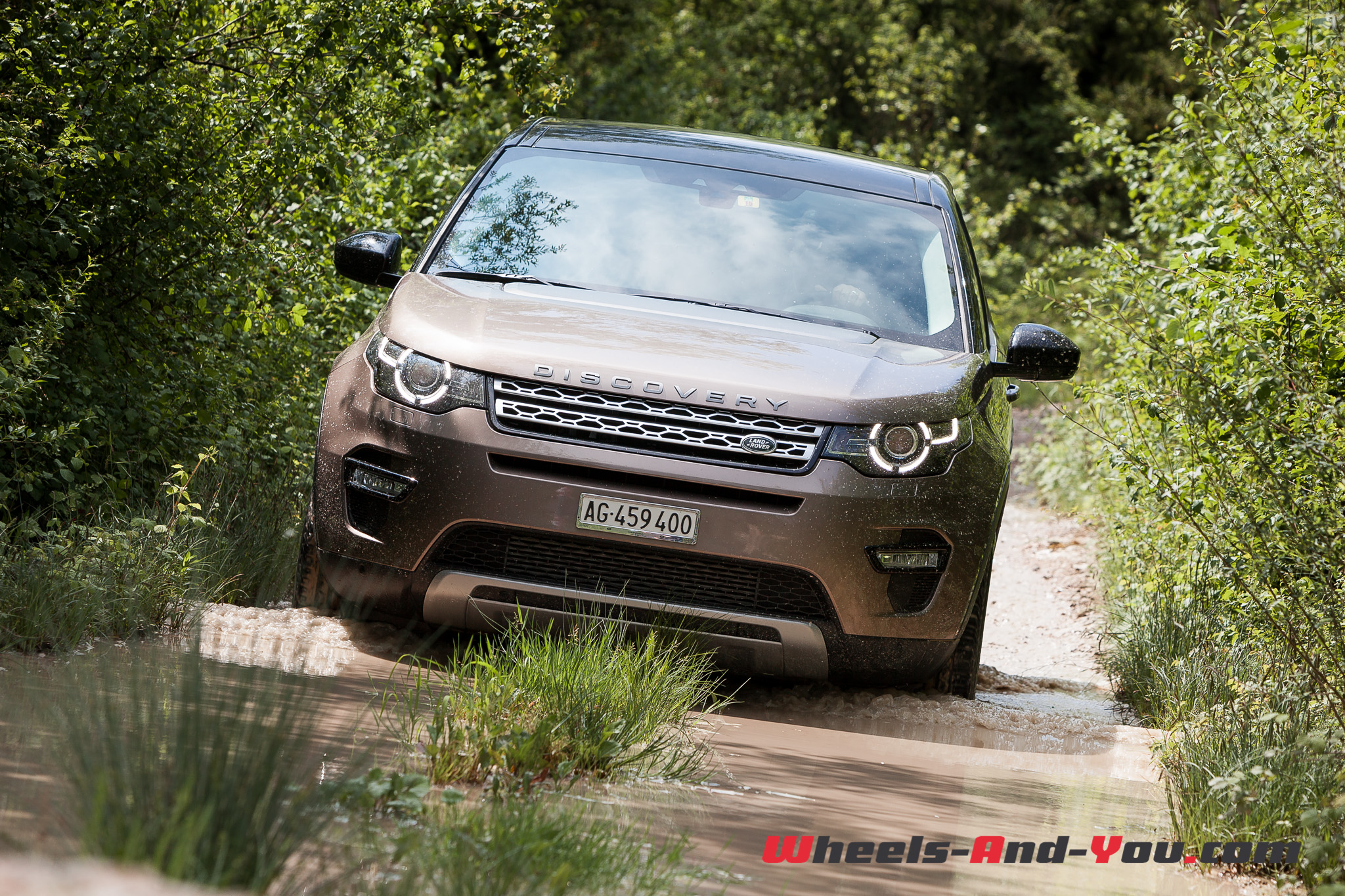Discovery-Sport-19