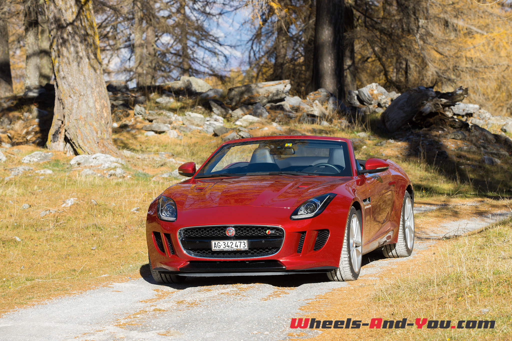 Jaguar F-Type S AWD-5