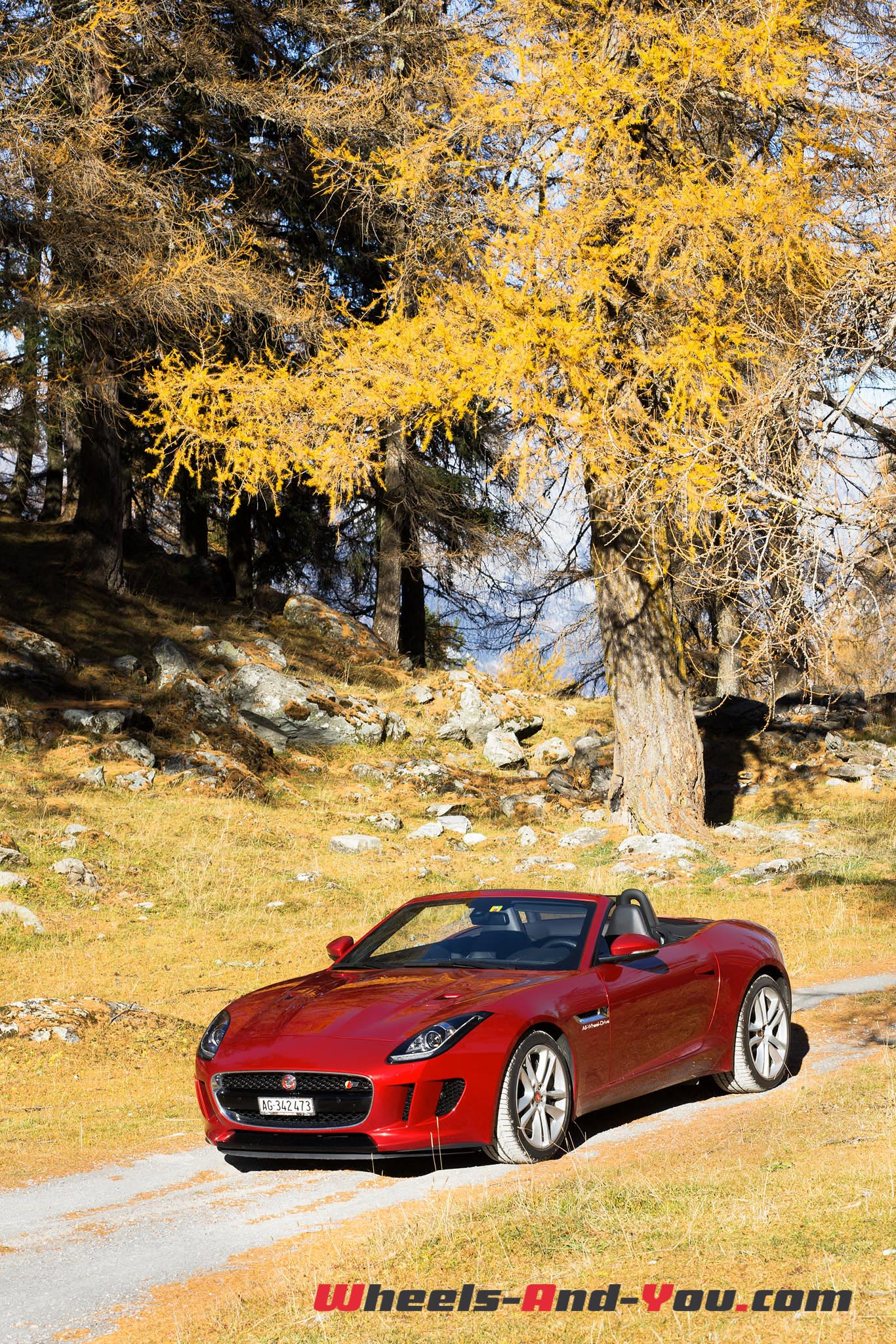 Jaguar F-Type S AWD-6