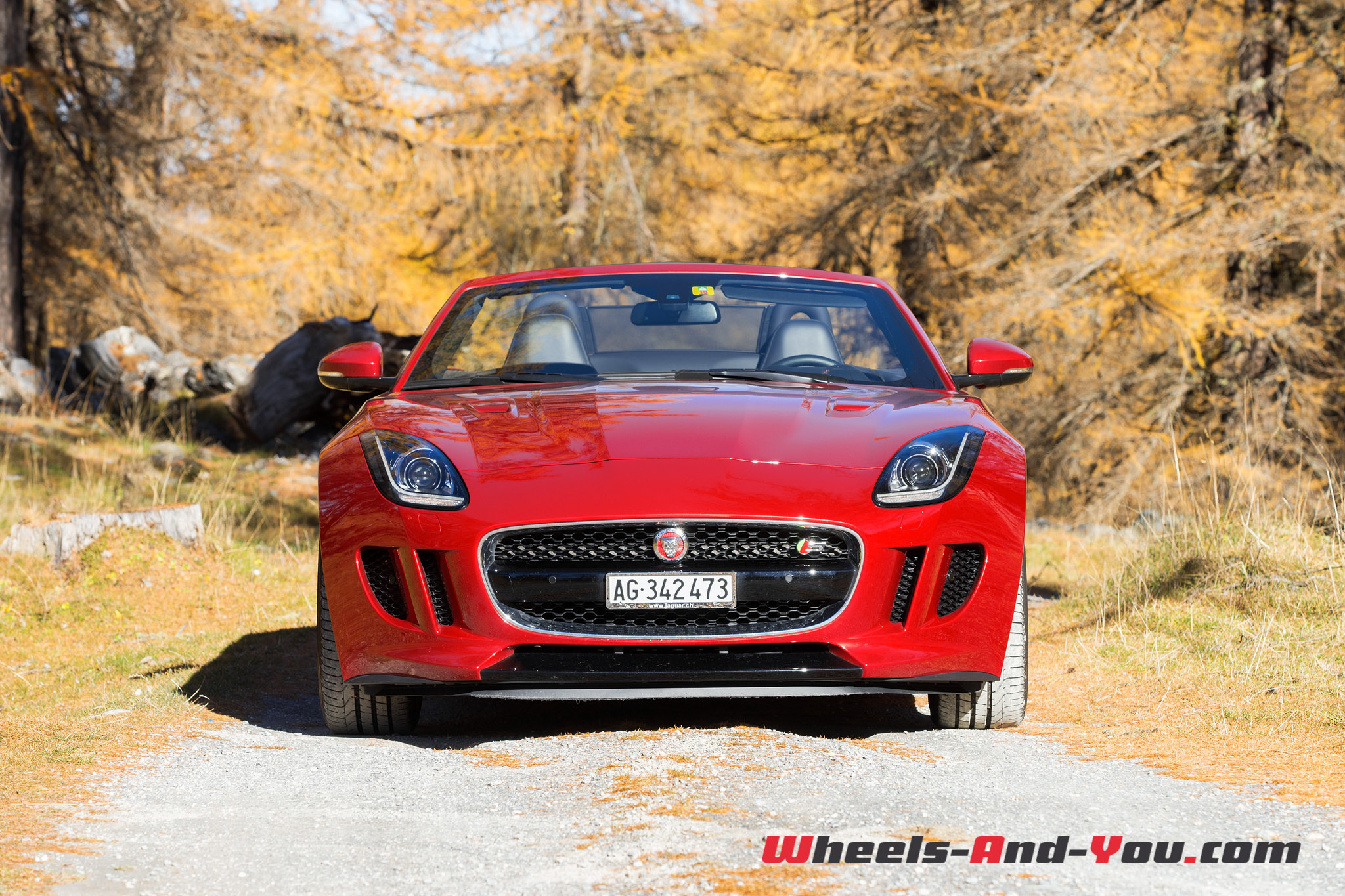 Jaguar F-Type S AWD-7
