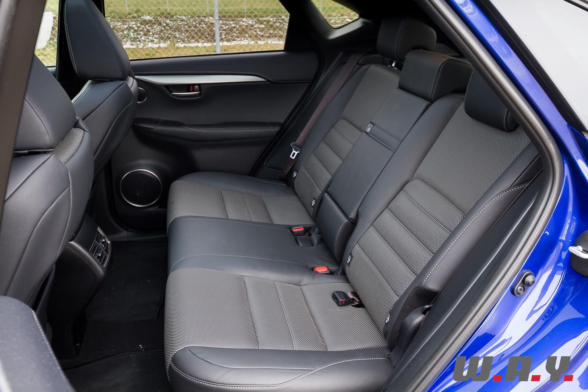 LexusNX300h 21