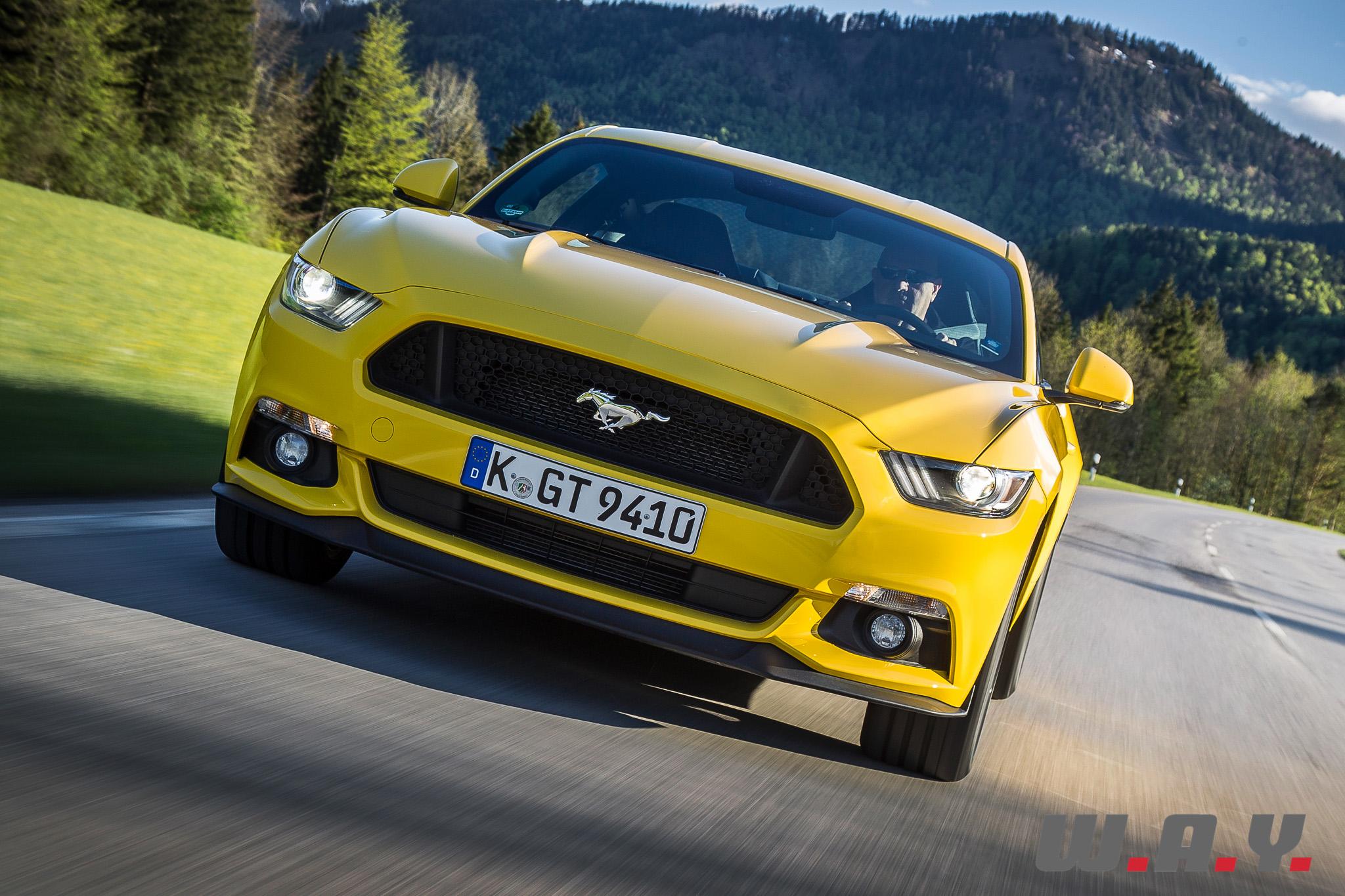 Mustang-04
