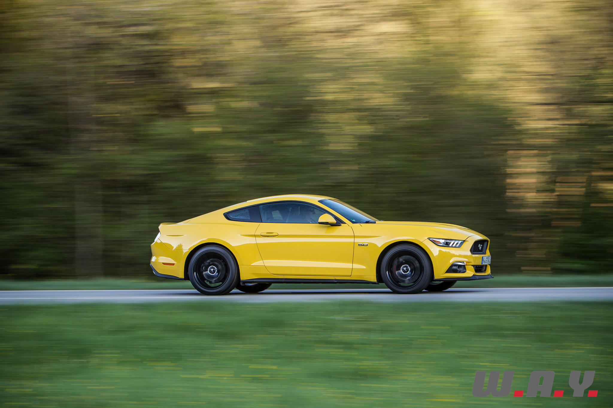 Mustang-05