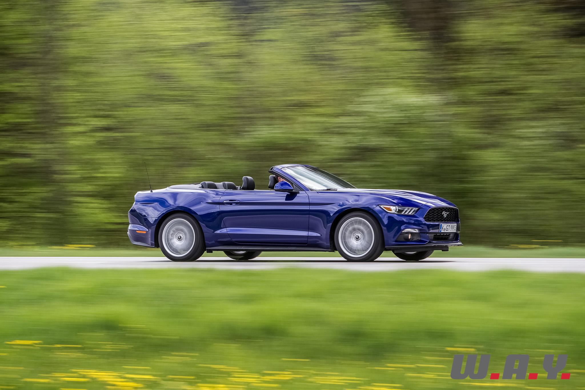 Mustang-08