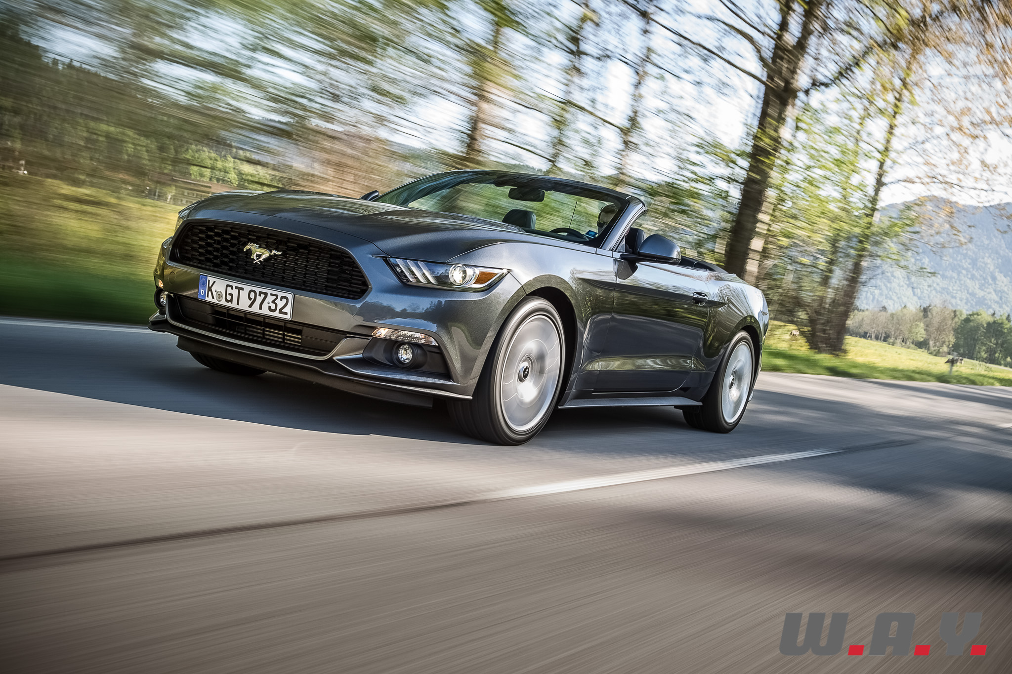 Mustang-09