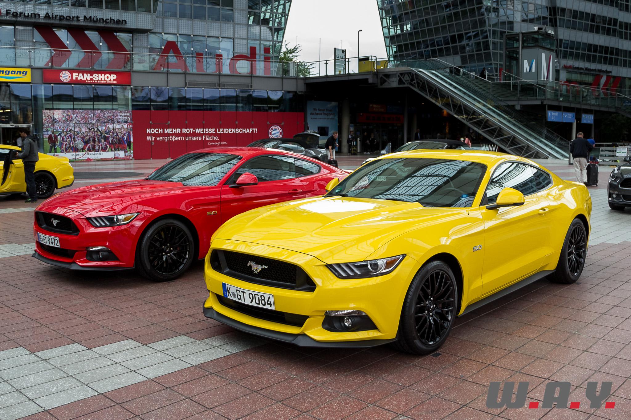 Mustang-12