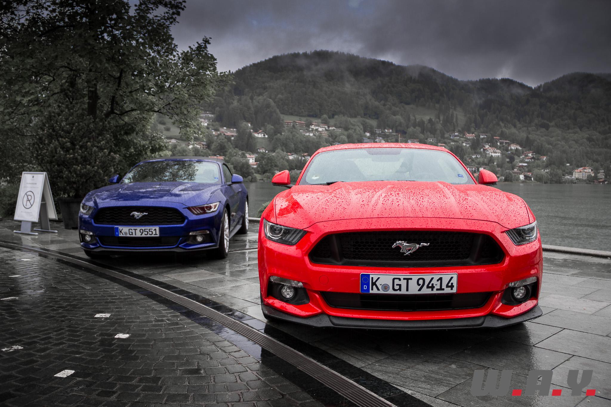 Mustang-20