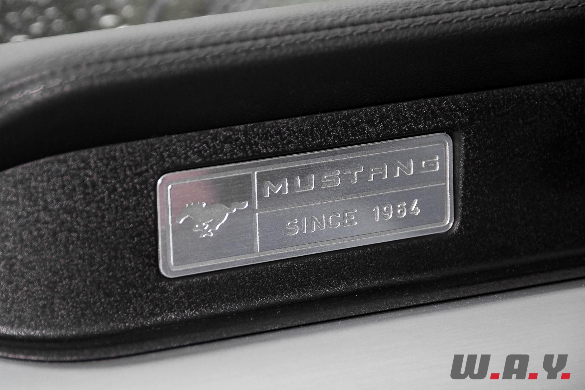 Mustang-33